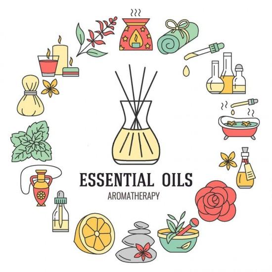 Essential Oil - Study Hard Element (Eucalyptus) 30ml
