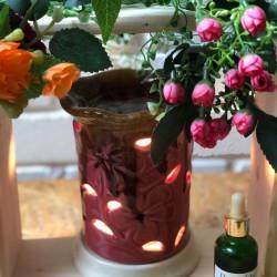 electric warmer pink lotus